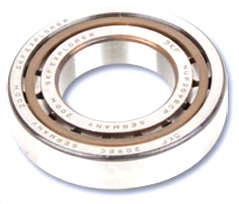 ALLWEILER® OEM Replacement Pump Bearings