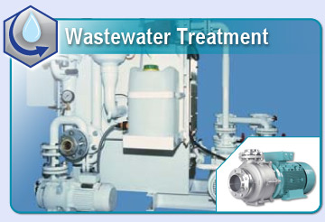 Marine Ballast Water and Wastewater Treatment