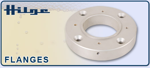 HILGE ANSI Replacement Sanitary Pump Flanges